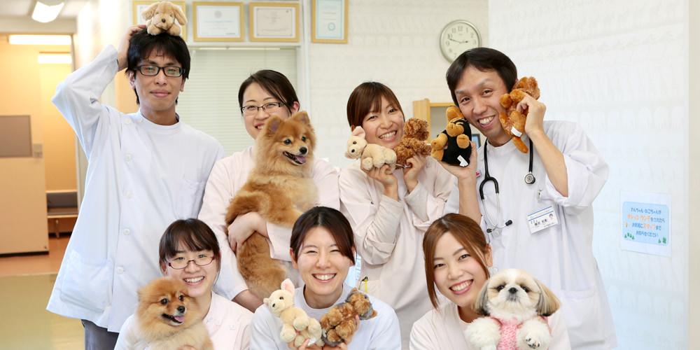 当院では、認定動物看護師の有資格者が看護にあたります。